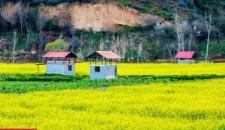 طبیعت بهاری مازندران