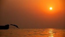 لذت شنا در جزیره کمتر شناخته شده ایران/تصاویر
