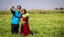 جشنواره برداشت گل نرگس در بهبهان/تصاویر