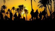 پیاده روی زائران اربعین در «طریق العلما»/تصاویر