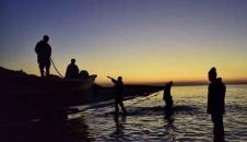 آغاز فصل صید ماهی در خزر/تصایر