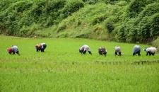 سفری آفرودی از آبی بیگلو تا لوندیل گیلان/تصاویر