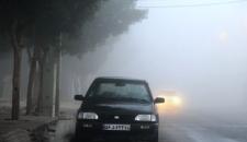 تصاویر: مه صبحگاهی در بوشهر