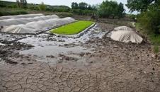 آمادهسازی شالیزار در بحران کم آبی/تصاویر
